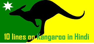 10 lines on Kangaroo in Hindi
