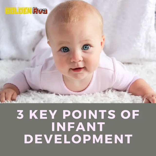 3 Key Points of Infant Development