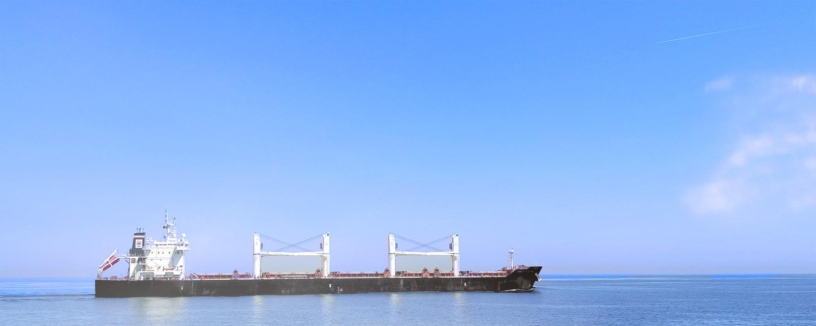 bulk vessel, سفن البضائع الصب