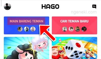 Main dengan teman HAGO