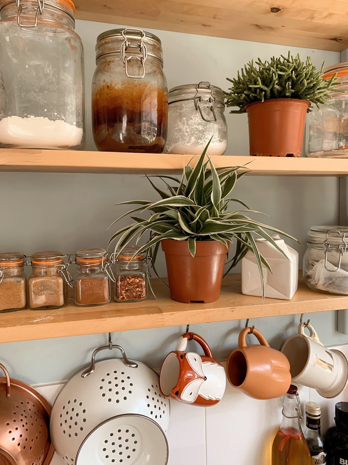 Kitchen Kilner jar organiser  spider plant