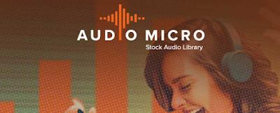 AudioMicro