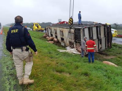 PRF informa ponto de lentidão no km 441 da Régis Bittencourt devido a um acidente