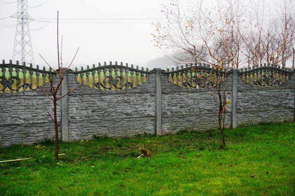 drzewka przyciete przed zimą