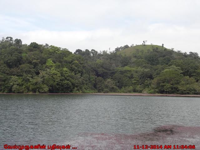 Pookode Lake scenic freshwater lake