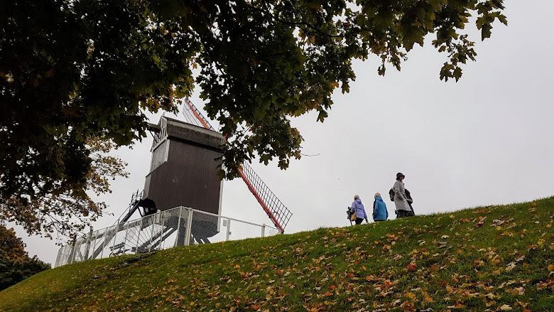 在步道上的風車