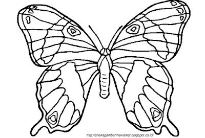 Gambar Mewarnai Kupu-kupu 2