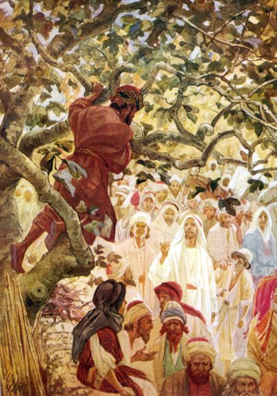 Aprendiendo La Sana Doctrina 06 11 12