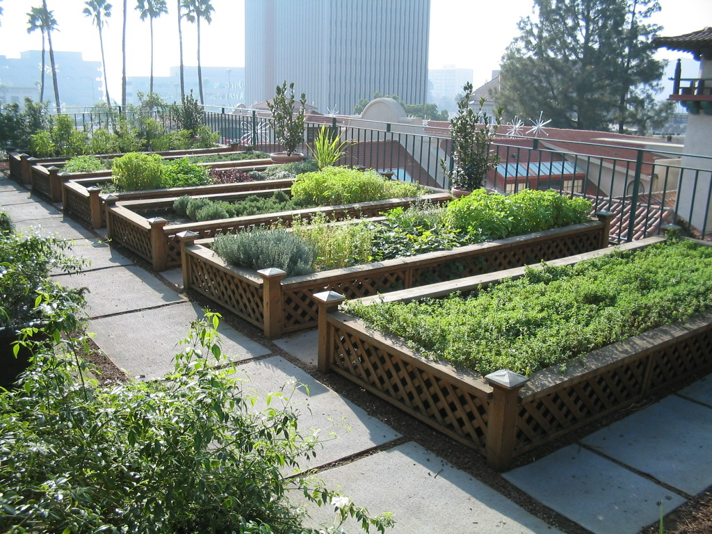 Urban Farming - Radenpedia.com