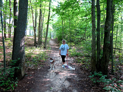 Dog friendly parks, beaches, and other recreational areas can have a positive impact on human health as well.  #dogfriendly