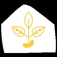 Đậu Care - Chăm sóc Mẹ Bầu online | DauCare