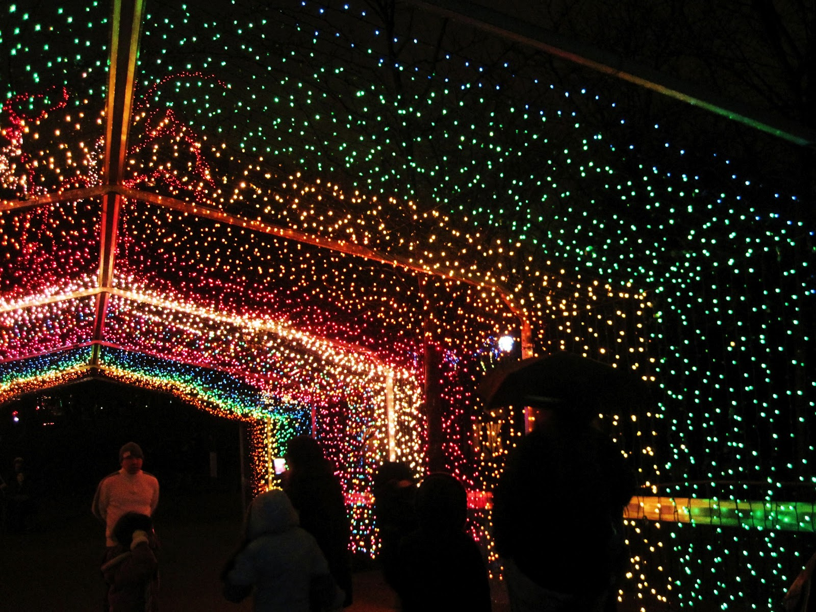 Christmas Light Displays In St Louis.Kymberly Marciano Countdown To Christmas Childrens Zoo Lights