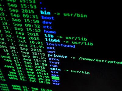 Nuevo ransomware Mount Locker