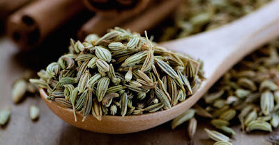 Chewing Fennel Seeds After Meals