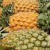 Des chercheurs transforment les déchets d'ananas en aérogels