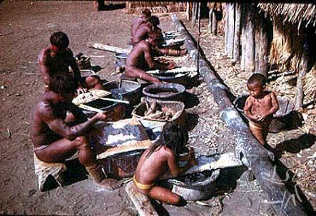 Tribo Waujá1