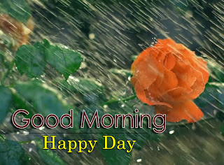 New Good Morning 4k Full HD Images Download For Daily%2B100