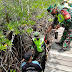 Dalam Rangka TMMD 110/Natuna, Lakukan Giat Penanaman Mangrove di Tempat Wisata Mangrove