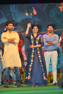 Nenu Local Audio Launch Stills  0116.JPG