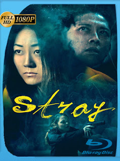 Stray (2019) HD [1080p] Latino [Google Drive] Panchirulo