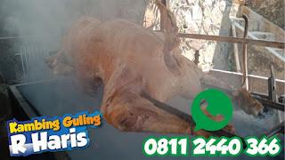 Kambing Guling Halal di Villa Istana Bunga Lembang, kambing guling di lembang, kambing guling lembang, kambing guling,