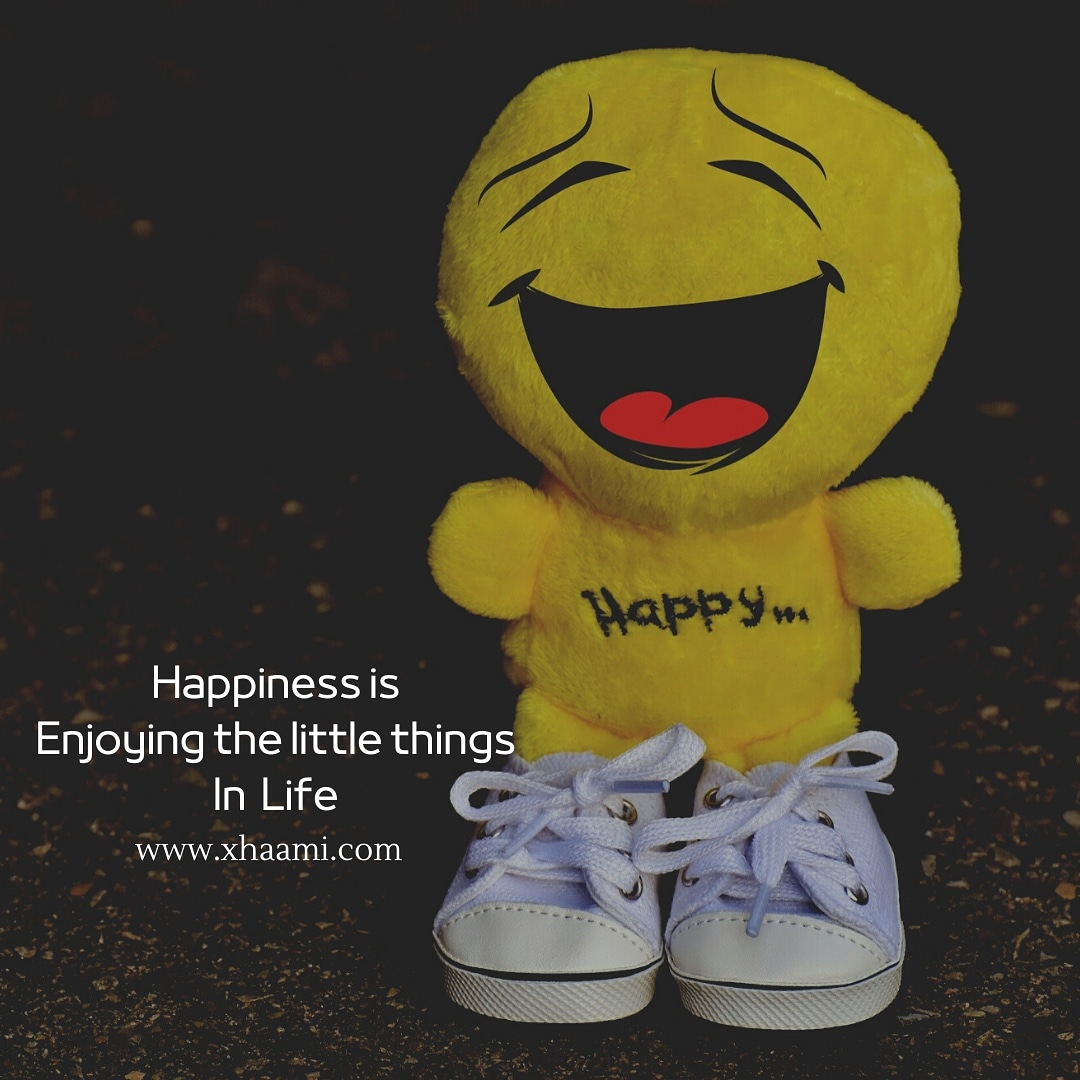 Happiness is Enjoying the little things in life Quote