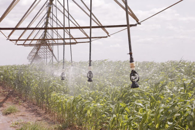 Karanja Kibicho at Galana Kulalu irrigation project photos and speech