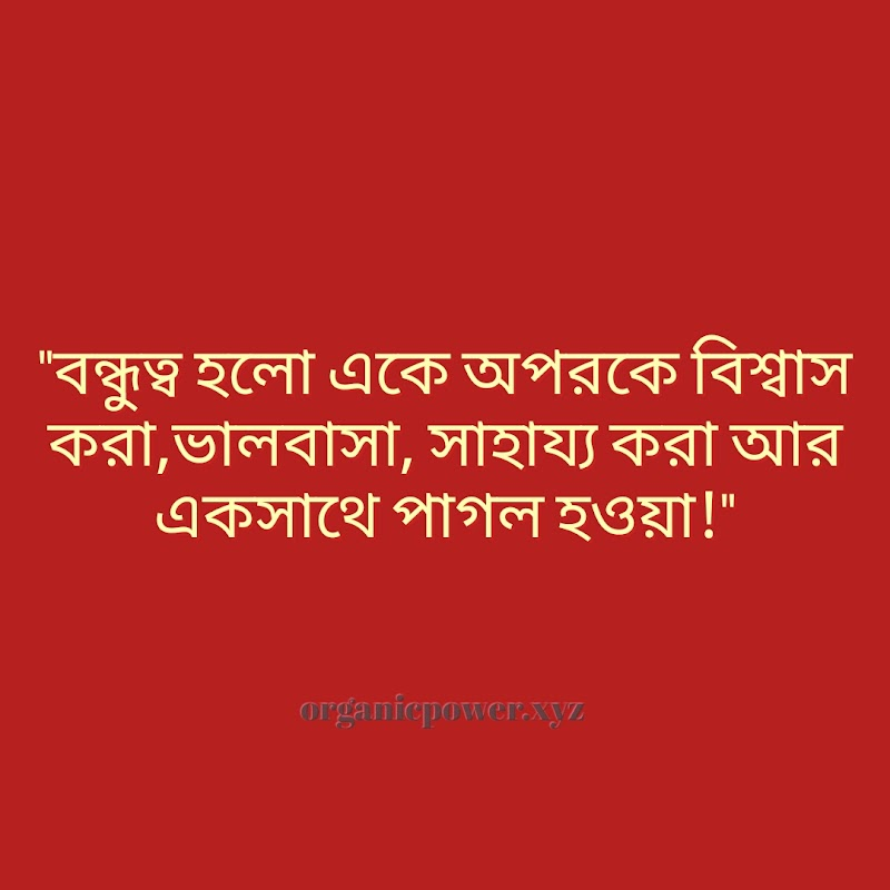 Best Bangla Quotes About Friendship