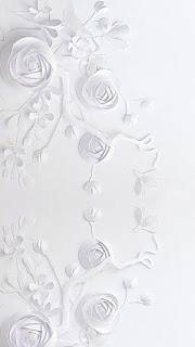 Gambar wallpaper wa bunga putih