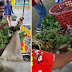 Cagayan Valley community pantry inspire poor woman to donate vegetables
