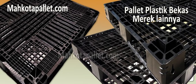 Review Pallet Plastik Bekas Ukuran 1300 x 1100 x 130 mm