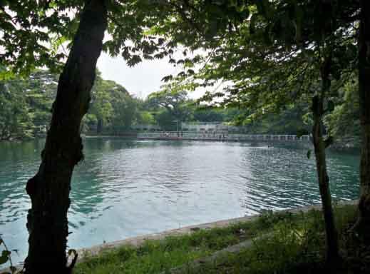 Danau Ronggojalu Proboliinggo Leces Gambar