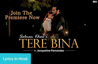 तेरे बिना Tere Bina Lyrics in Hindi | Salman Khan