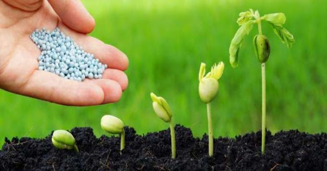 Fertilizer Industry Lends Support To Govt And Farmers