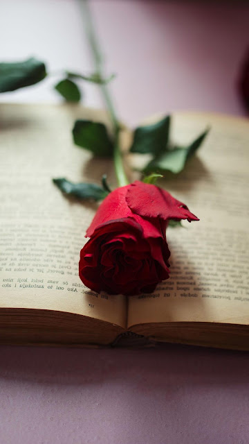 Flower wallpaper on book