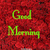 Top 100 Best Good Morning Wishes Images, Photo  Greetings, Pictures for whatsapp Facebook and Bestwishespics.com