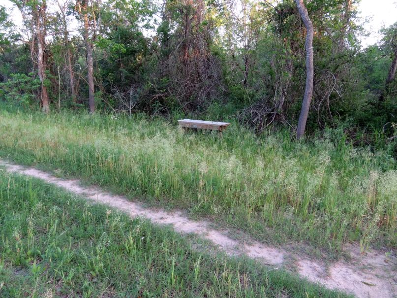 H Town West Photo Blog Noble Road Trail In George Bush Park Offers