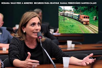 Rosana Valle pede a ministro  recursos para reativar  ramal ferroviário Santos-Cajati