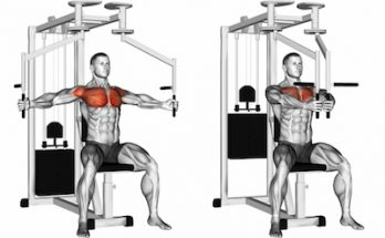Benefits of Pectoral Fly