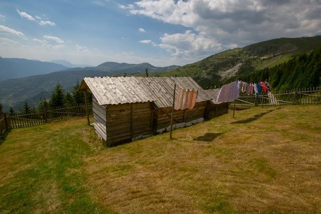 Plavske priče (Ramo Markišić): Planinka