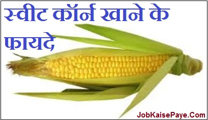What are the beneficial properties of eating sweet corn