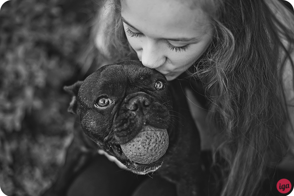 sesja zdjęciowa z psem wrocław