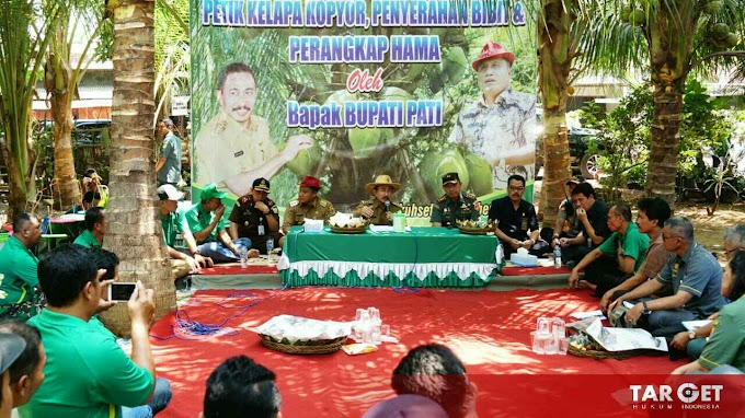 Bupati Haryanto Dorong Masyarakat Pati Utara Tekuni Budidaya Kelapa Kopyor