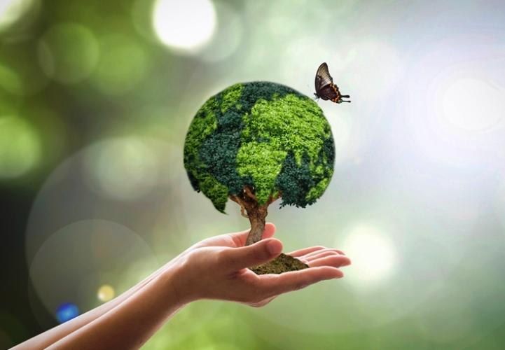 cuidar do meio ambiente