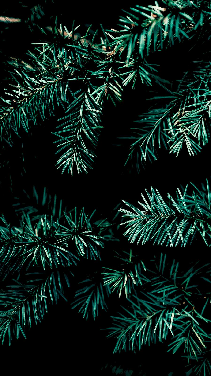 Christmas vibe for Amoled display