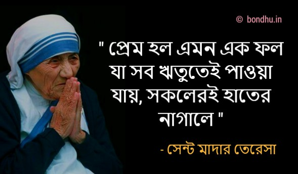 quotes_by_mother_teresa