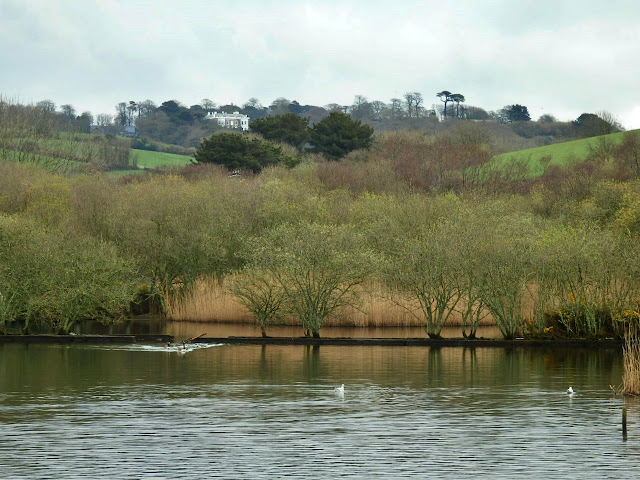 Lake at Par Beach, Cornwall