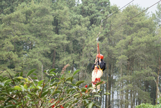 flying fox di grafika cikole