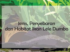 Jenis, Penyebaran dan Habitat Ikan Lele Dumbo