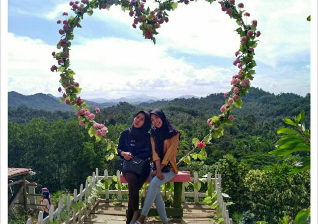 bunga love di bukit pangonan